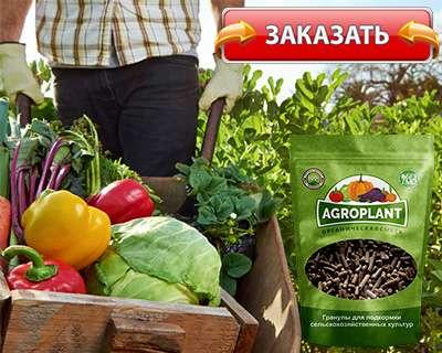 Заказать Агроплант на официальном сайте